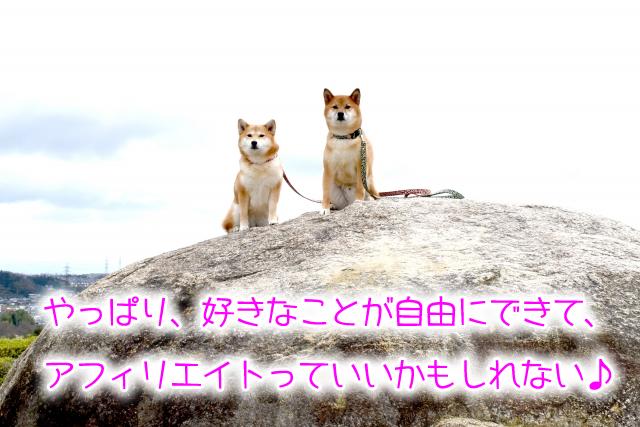 感想のイメージ写真